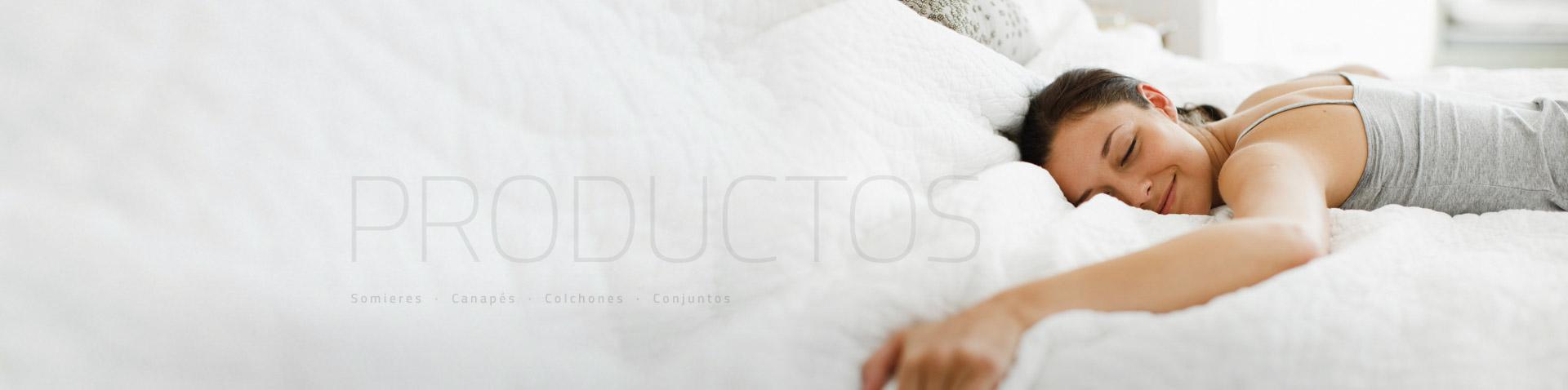 domotex catalogo productos